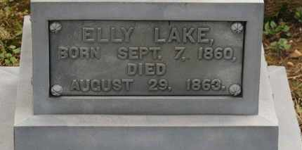 LAKE, ELLY - Delaware County, Ohio | ELLY LAKE - Ohio Gravestone Photos