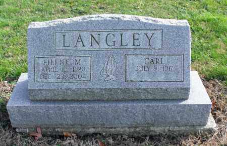 LANGLEY, EILENE MAE - Delaware County, Ohio | EILENE MAE LANGLEY - Ohio Gravestone Photos