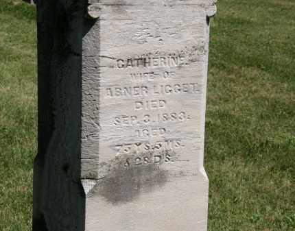 LIGGET, ABNER - Delaware County, Ohio | ABNER LIGGET - Ohio Gravestone Photos