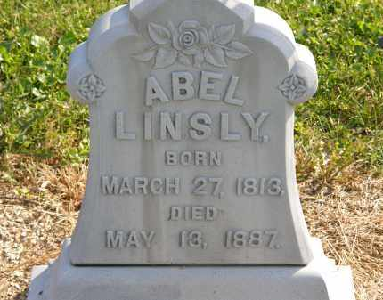 LINSLY, ABEL - Delaware County, Ohio | ABEL LINSLY - Ohio Gravestone Photos