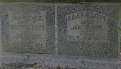 LOTT, RILEY - Delaware County, Ohio | RILEY LOTT - Ohio Gravestone Photos