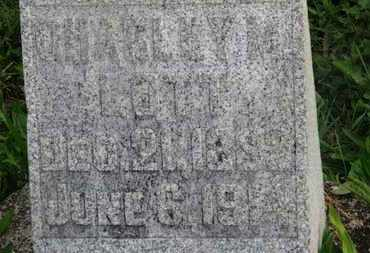 LOTT, CHARLEY M. - Delaware County, Ohio | CHARLEY M. LOTT - Ohio Gravestone Photos