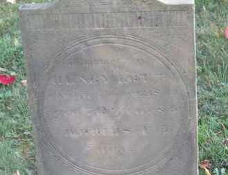 LOTT, HENRY - Delaware County, Ohio | HENRY LOTT - Ohio Gravestone Photos