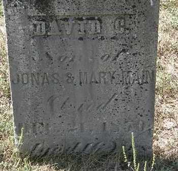 MAIN, DAVID C. - Delaware County, Ohio | DAVID C. MAIN - Ohio Gravestone Photos