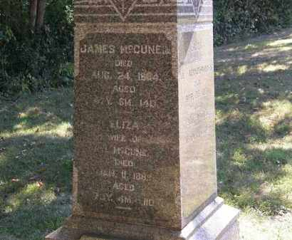 MCCUNE, JR., JAMES - Delaware County, Ohio | JAMES MCCUNE, JR. - Ohio Gravestone Photos