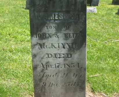 MCKINNIE, JAMES M. - Delaware County, Ohio | JAMES M. MCKINNIE - Ohio Gravestone Photos