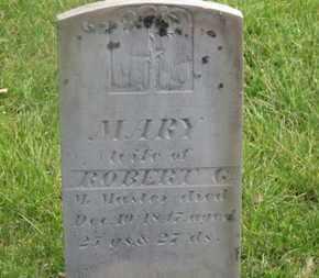 MCMASTER, MARY - Delaware County, Ohio   MARY MCMASTER - Ohio Gravestone Photos