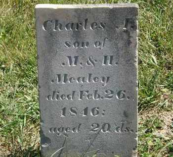 MEALEY, CHARLES  A. - Delaware County, Ohio | CHARLES  A. MEALEY - Ohio Gravestone Photos