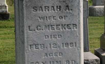 MEEKER, L.C. - Delaware County, Ohio | L.C. MEEKER - Ohio Gravestone Photos