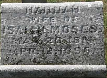 MOSES, ISAIAH - Delaware County, Ohio | ISAIAH MOSES - Ohio Gravestone Photos