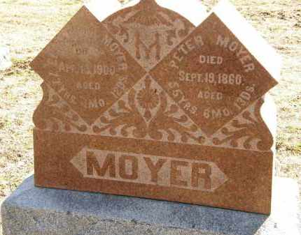 MOYER, PETER - Delaware County, Ohio | PETER MOYER - Ohio Gravestone Photos