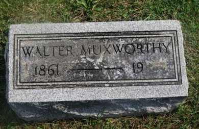 MUXWORTHY, WALTER - Delaware County, Ohio | WALTER MUXWORTHY - Ohio Gravestone Photos