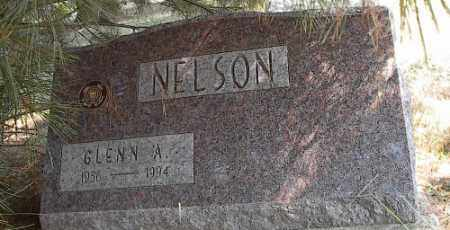 NELSON, GLENN ALBERT - Delaware County, Ohio | GLENN ALBERT NELSON - Ohio Gravestone Photos