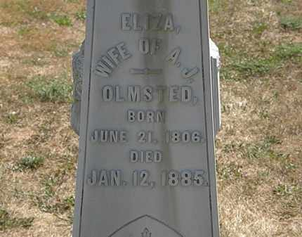 OLMSTED, ELIZA - Delaware County, Ohio | ELIZA OLMSTED - Ohio Gravestone Photos