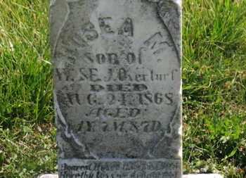 OVERTURF, HOSEA M. - Delaware County, Ohio | HOSEA M. OVERTURF - Ohio Gravestone Photos