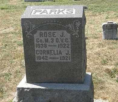 PARKS, ROSE J. - Delaware County, Ohio | ROSE J. PARKS - Ohio Gravestone Photos