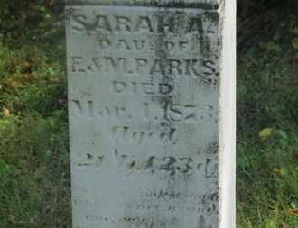PARKS, SARAH A. - Delaware County, Ohio | SARAH A. PARKS - Ohio Gravestone Photos