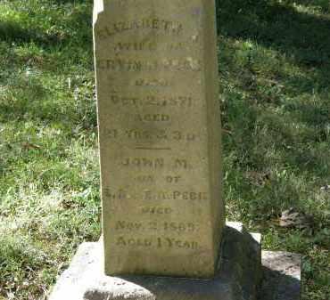 PECK, ERVIN B. - Delaware County, Ohio | ERVIN B. PECK - Ohio Gravestone Photos