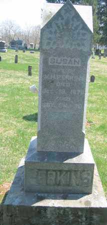 PERKINS, AMANDA J. - Delaware County, Ohio | AMANDA J. PERKINS - Ohio Gravestone Photos