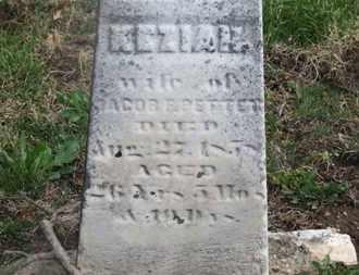 PETTET, KEZIAH - Delaware County, Ohio | KEZIAH PETTET - Ohio Gravestone Photos