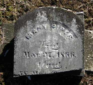 PIFER, MARY - Delaware County, Ohio | MARY PIFER - Ohio Gravestone Photos
