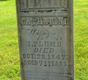 PLUMB, CATHARINE - Delaware County, Ohio | CATHARINE PLUMB - Ohio Gravestone Photos