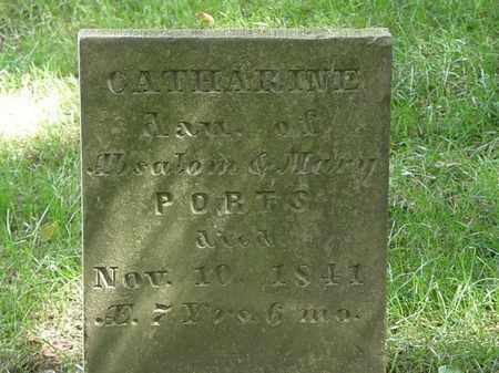 PORTS, CATHARINE - Delaware County, Ohio | CATHARINE PORTS - Ohio Gravestone Photos