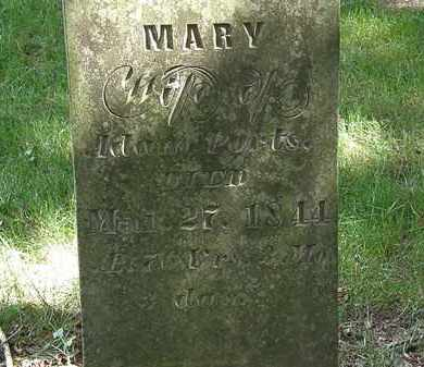 PORTS, MARY - Delaware County, Ohio | MARY PORTS - Ohio Gravestone Photos