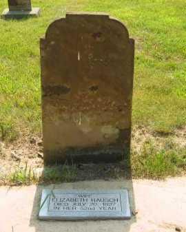 RAUSCH, ELIZABETH - Delaware County, Ohio | ELIZABETH RAUSCH - Ohio Gravestone Photos