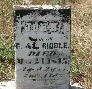 RIDDLE, L. - Delaware County, Ohio | L. RIDDLE - Ohio Gravestone Photos
