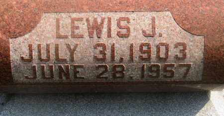 RINEHART, LEWIS J. - Delaware County, Ohio | LEWIS J. RINEHART - Ohio Gravestone Photos