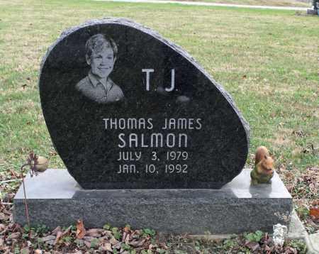 SALMON, THOMAS JAMES - Delaware County, Ohio | THOMAS JAMES SALMON - Ohio Gravestone Photos