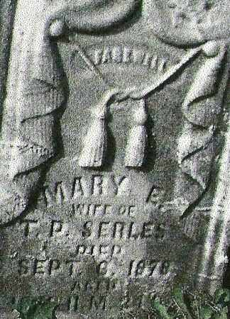 SERLES, MARY ELLEN - Delaware County, Ohio | MARY ELLEN SERLES - Ohio Gravestone Photos