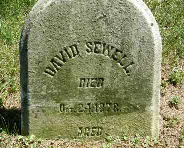 SEWELL, DAVID - Delaware County, Ohio | DAVID SEWELL - Ohio Gravestone Photos