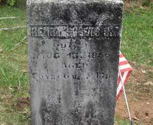 SHEETS, HENRY - Delaware County, Ohio | HENRY SHEETS - Ohio Gravestone Photos