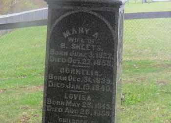 SHEETS, CORNELIA - Delaware County, Ohio | CORNELIA SHEETS - Ohio Gravestone Photos