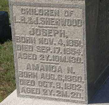 SHERWOOD, JOSEPH - Delaware County, Ohio | JOSEPH SHERWOOD - Ohio Gravestone Photos