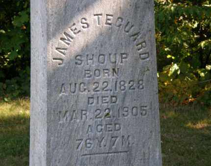SHOUP, JAMES TECUARD - Delaware County, Ohio | JAMES TECUARD SHOUP - Ohio Gravestone Photos