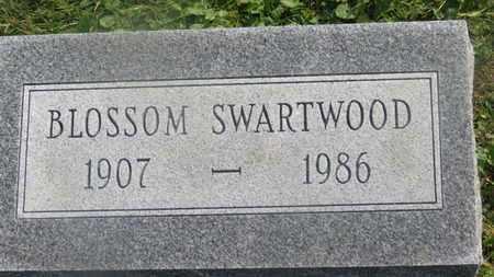 SMARTWOOD, BLOSSOM - Delaware County, Ohio | BLOSSOM SMARTWOOD - Ohio Gravestone Photos