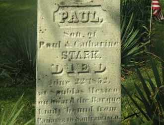 STARK, PAUL - Delaware County, Ohio | PAUL STARK - Ohio Gravestone Photos