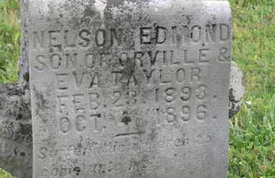 TAYLO, EVA - Delaware County, Ohio | EVA TAYLO - Ohio Gravestone Photos