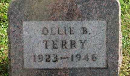 TERRY, OLLIE B. - Delaware County, Ohio | OLLIE B. TERRY - Ohio Gravestone Photos