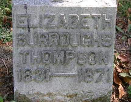 THOMPSON, ELIZABETH - Delaware County, Ohio | ELIZABETH THOMPSON - Ohio Gravestone Photos