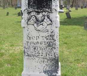 THURSTON, NORTON - Delaware County, Ohio | NORTON THURSTON - Ohio Gravestone Photos