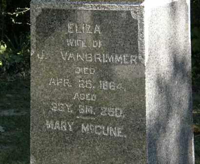VANBRIMMER, ELIZA - Delaware County, Ohio | ELIZA VANBRIMMER - Ohio Gravestone Photos