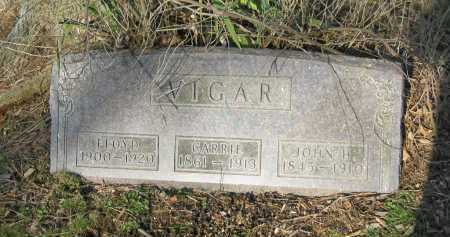 VIGAR, CARRIE - Delaware County, Ohio | CARRIE VIGAR - Ohio Gravestone Photos