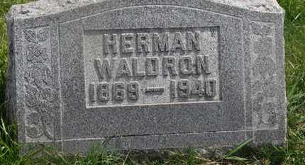 WALDRON, HERMAN - Delaware County, Ohio | HERMAN WALDRON - Ohio Gravestone Photos