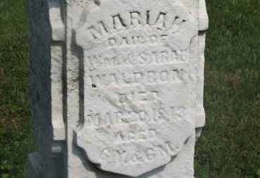 WALDRON, MARIAH - Delaware County, Ohio | MARIAH WALDRON - Ohio Gravestone Photos