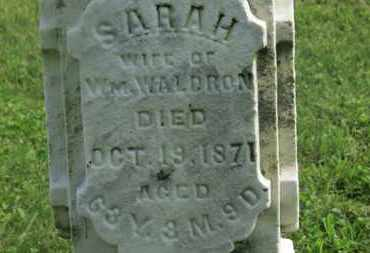 WALDRON, SARAH - Delaware County, Ohio | SARAH WALDRON - Ohio Gravestone Photos