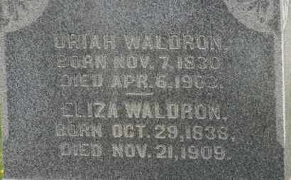 WALDRON, ELIZA - Delaware County, Ohio | ELIZA WALDRON - Ohio Gravestone Photos